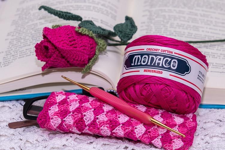 Eye Glass Cozy using size 8 Monaco Crochet Thread
